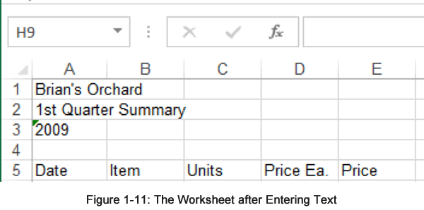 Entering Text into a Worksheet
