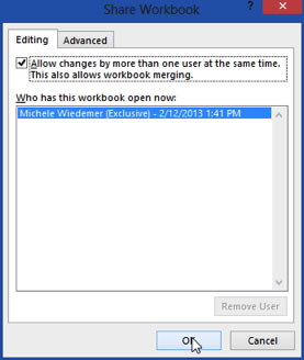 Share WorkBook - Dialogue Box
