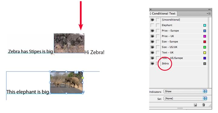 Conditional Images workaround in InDesign