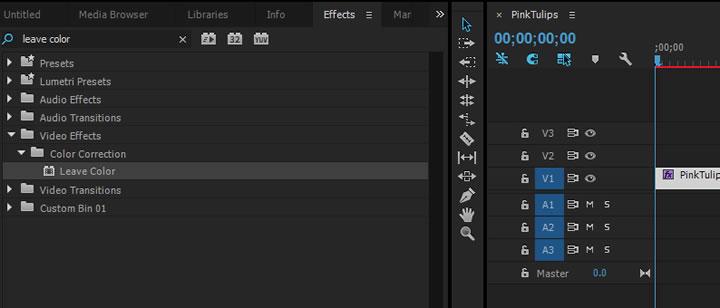 Premiere Pro Effects panel