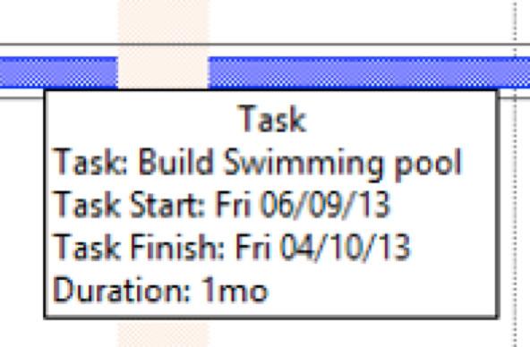 Microsoft Project Task